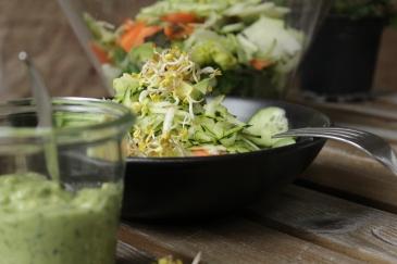 Schnell und einfach zubereitet ist dieser Rohkostsalat mit grünem Dressing aus Avocado und Petersilie. Zudem liefert der Salat viel pflanzliches Eisen dank Feldsalat.